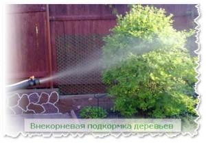 vnekornevaja_podkormka-448x313