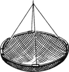 Раколовка-сетчатая-287x300