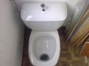 Почему воняет из унитаза канализацией