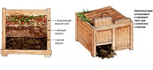 kompost_11
